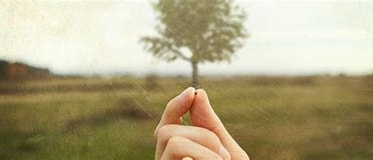 Image result for faith like a mustard seed. Size: 373 x 160. Source: www.circleofhope.net