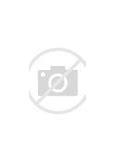 Image result for End of the Spear Online