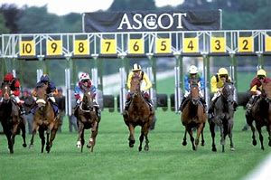 Image result for royal ascot races