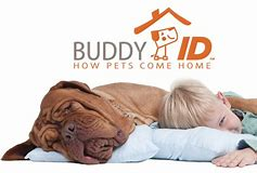 Image result for Buddy ID pets