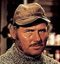 Image result for Robert Shaw