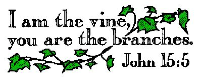 Image result for Jesus Vine and Branches