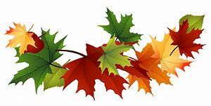 Image result for free picture of autumn leaves