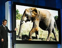 Image result for world's largest tv. Size: 207 x 160. Source: www.dailymail.co.uk