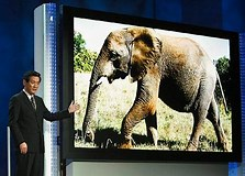 Image result for world's largest tv. Size: 223 x 160. Source: www.dailymail.co.uk