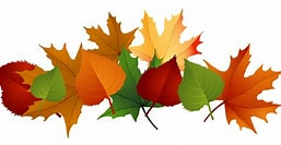 Image result for Fall Leaves Clip Art. Size: 244 x 133. Source: cliparts.co