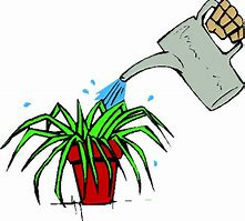 Image result for free clip art of watering a plant