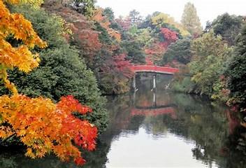 古城公園紅葉 に対する画像結果