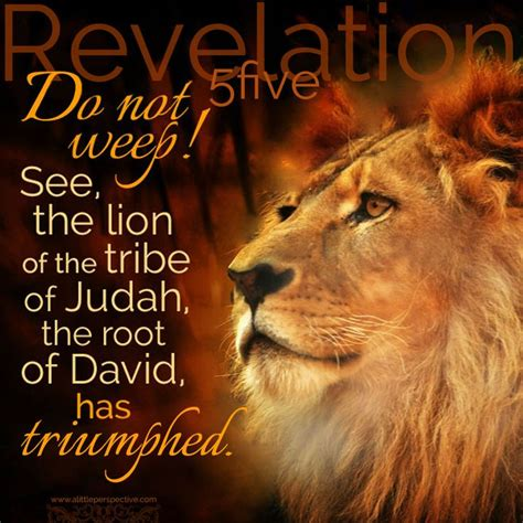 Image result for jesus the lion of the tribe of judah