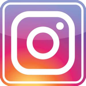 Image result for instagram button
