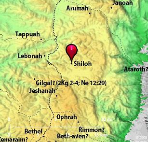 Image result for Shiloh bible