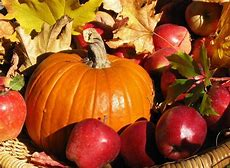 Image result for Fall Harvest