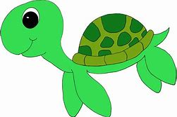 Image result for clipart turtle