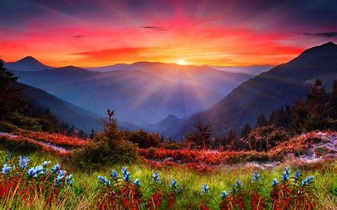 Image result for free photos of sunrise