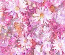 花 フリー画像 に対する画像結果