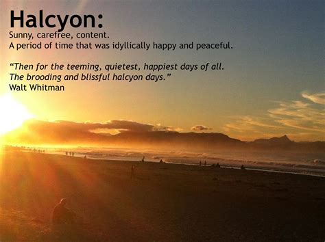 Image result for halcyon days
