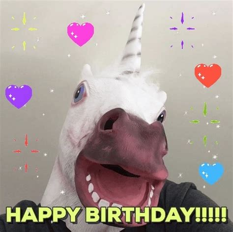 Image result for funny unicorn