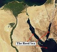 Image result for Sea Reed Sea Not Red