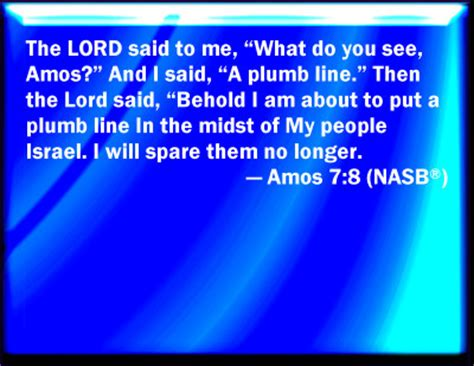 Image result for Amos Plumbline