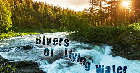 Image result for Rivers of living water