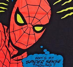Image result for Spidey sense