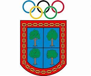 Resultado de imagen de escudo del LAGUNAK