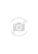 Image result for 1 John 5:21
