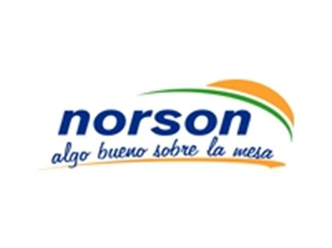Resultado de imagen de logo de Norson