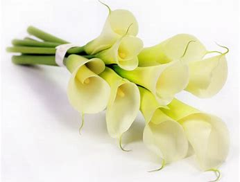 Image result for funeral flower clipart