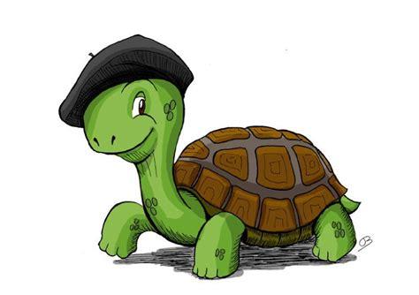 Résultat d'images pour tortue avec un beret