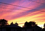 Image result for Royalty Free Picture of Sunset over houses