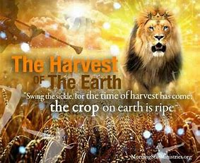 Image result for Three Biblical harvests