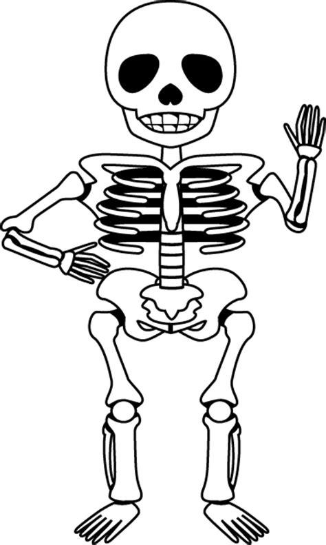 イラスト骨模型の画像 に対する画像結果