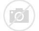 Résultat d'images pour moutons