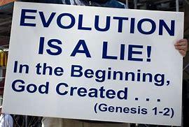 Image result for evolution is a lie