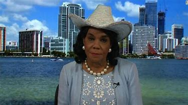 Image result for images of frederica wilson with silly hat
