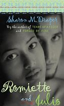 Image result for romiette and julio  book