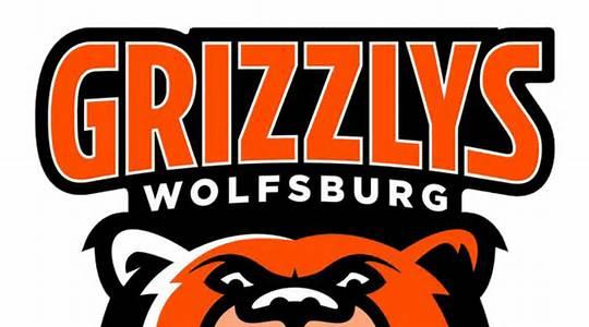 Grizzlys schlagen Wild Wings mit 1:0
