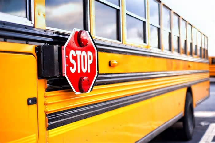 Districts across Tampa Bay experiencing school bus driver shortages