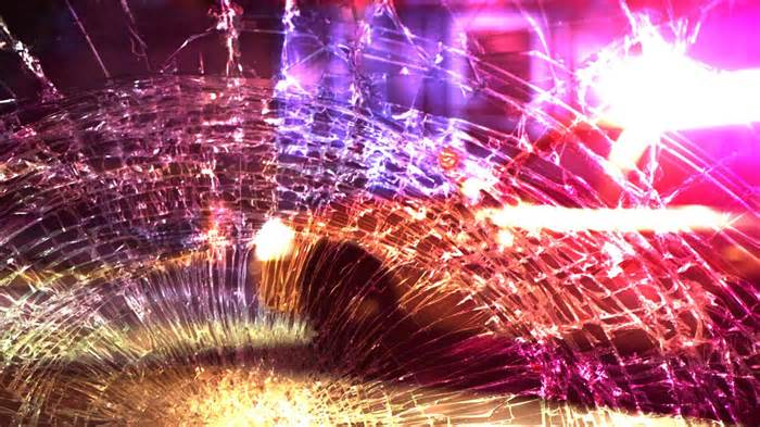 Troopers: Pedestrian fatally struck by vehicle on I-26 in Orangeburg County
