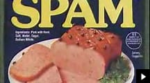 SPAM song - YouTube