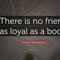 Book Sayings