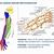 Radio Nervión 88 FM Bilbao