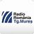 Radio România Târgu Mures FM