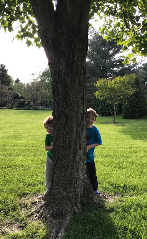 Children trying to hide behind a tree but still visible.